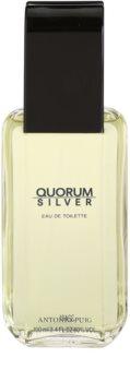Antonio Puig Quorum Silver toaletní voda pro muže 100 ml