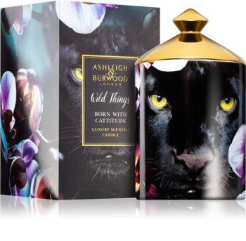 Ashleigh & Burwood London Wild Things Born With Cattitude vonná svíčka 320 g