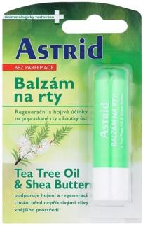 Astrid Lip Care baume à lèvres régénérant