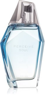 Avon Perceive Soul eau de toilette pour homme