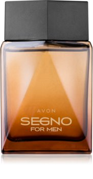 Avon Segno Eau de Parfum für Herren 75 ml