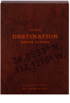 Avon Destination Grand Canyon eau de toilette pentru bărbați 75 ml