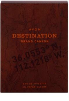 Avon Destination Grand Canyon toaletní voda pro muže 75 ml