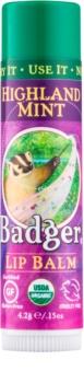Badger Classic Highland Mint balsamo labbra