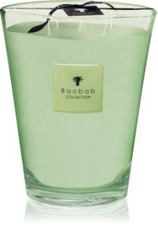 Baobab Modernista Vidre Poetry bougie parfumée