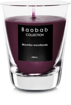 Baobab Miombo Woodlands bougie parfumée (votive) 6,5 cm