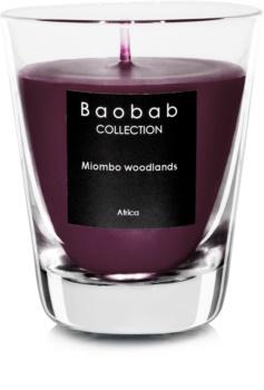 Baobab Miombo Woodlands vonná sviečka 6,5 cm (votívna)