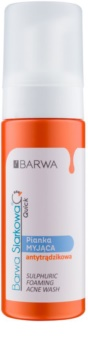 Barwa Sulphur Quick Washing Foam for Problematic Skin