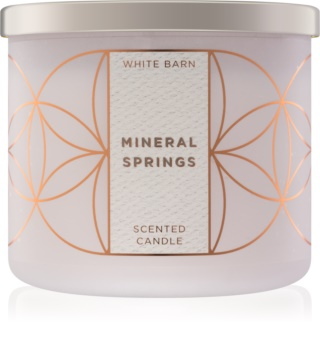 Bath & Body Works Mineral Springs bougie parfumée 411 g