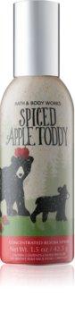 Bath & Body Works Spiced Apple Toddy room spray I.