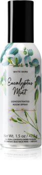 Bath & Body Works Eucalyptus Mint parfum d'ambiance I. 42,5 g