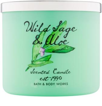 Bath & Body Works Wild Sage & Aloe vela perfumado 411 g
