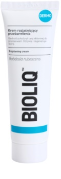 Bioliq Dermo Brightening Cream For Unified Skin Tone