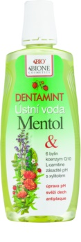 Bione Cosmetics Dentamint ústní voda