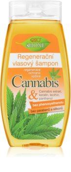 Bione Cosmetics Cannabis champú regenerador