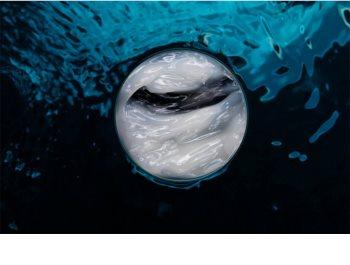 Biotherm Life Plankton masque apaisant régénérateur