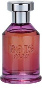 Bois 1920 Spigo 1920 eau de parfum mixte 100 ml