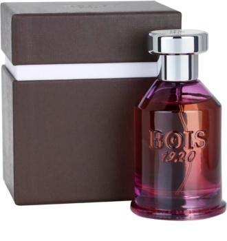 Bois 1920 Spigo 1920 parfémovaná voda unisex 100 ml