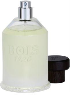 Bois 1920 Agrumi Amari di Sicilia Eau de Toilette unisex 100 ml