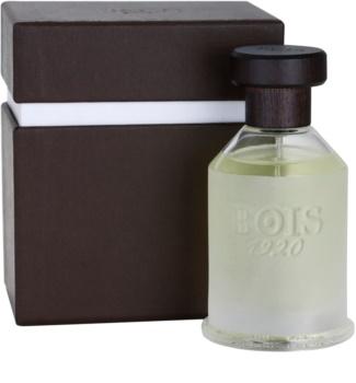 Bois 1920 Agrumi Amari di Sicilia eau de toilette mixte 100 ml