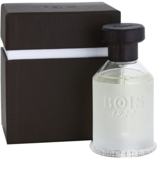 Bois 1920 Classic 1920 toaletná voda unisex 100 ml