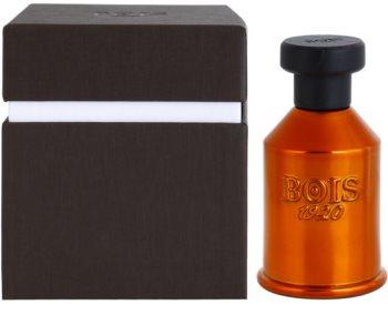 Bois 1920 Vento nel Vento Eau de Parfum unisex 100 ml