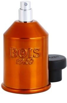Bois 1920 Vento nel Vento Parfumovaná voda unisex 100 ml