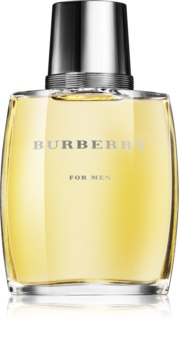 Burberry Burberry for Men Eau de Toilette Herren 100 ml