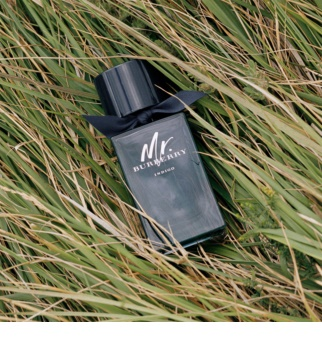 Burberry Mr. Burberry Indigo eau de toilette per uomo 100 ml