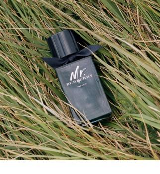 Burberry Mr. Burberry Indigo woda toaletowa dla mężczyzn 100 ml