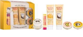 Burt's Bees Care lote cosmético II.