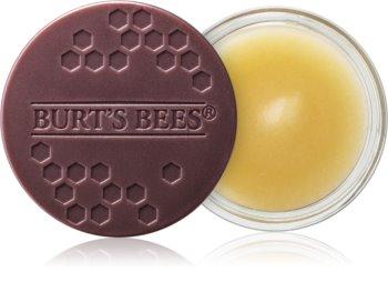 Burt's Bees Lip Treatment Intense Overnight Treatment for Lips