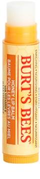 Burt's Bees Lip Care balzam na pery s medom