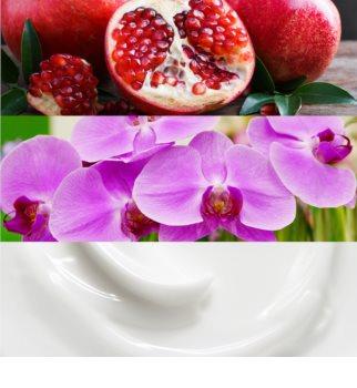 Calvin Klein Euphoria eau de parfum para mujer 100 ml