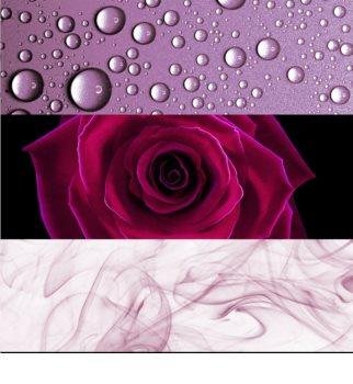 Calvin Klein Deep Euphoria parfémovaná voda pro ženy 100 ml