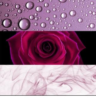 Calvin Klein Deep Euphoria Parfumovaná voda pre ženy 100 ml