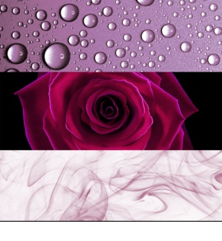 Calvin Klein Deep Euphoria parfumska voda za ženske 100 ml