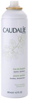 Caudalie Cleaners&Toners frissítő víz spray minden bőrtípusra, beleértve az érzékeny bőrt is