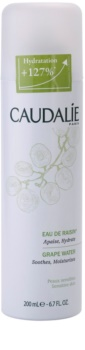 Caudalie Cleaners&Toners Refreshing Water In Spray for All Skin Types Including Sensitive