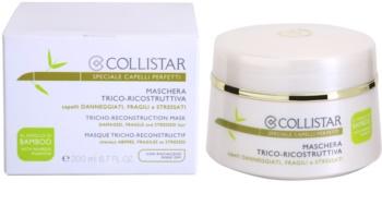 Collistar Special Perfect Hair erneuernde Maske für beschädigtes und brüchiges Haar