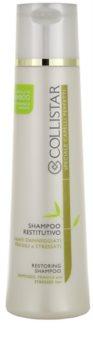 Collistar Special Perfect Hair шампунь для пошкодженного,хімічним вливом, волосся