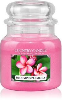 Country Candle Blooming Plumeria vonná svíčka 453 g
