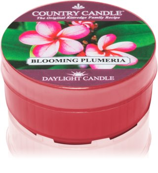 Country Candle Blooming Plumeria Tealight Candle 35 g