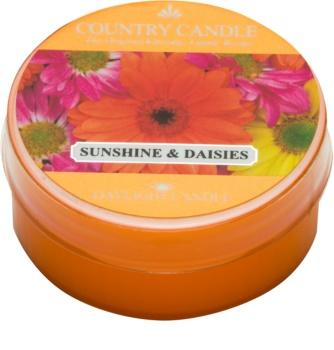 Country Candle Sunshine & Daisies čajová svíčka 42 g