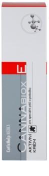 CutisHelp Medica CannaBiox E Aktiv-Creme für allergische Haut beim Auftreten von Ekzemen