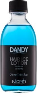 DANDY Hair Lotion cura per capelli