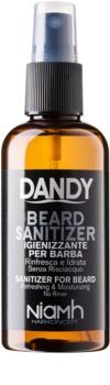 DANDY Beard Sanitizer bezoplachový dezinfekční sprej pro ochranu vousů