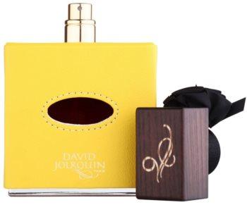 David Jourquin Cuir Solaire Eau de Parfum unissexo 100 ml