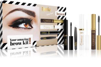 Delia Cosmetics Eyebrow Expert Brown kosmetická sada IV. (na obočí) pro ženy