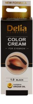 Delia Cosmetics Argan Oil farba na obočie
